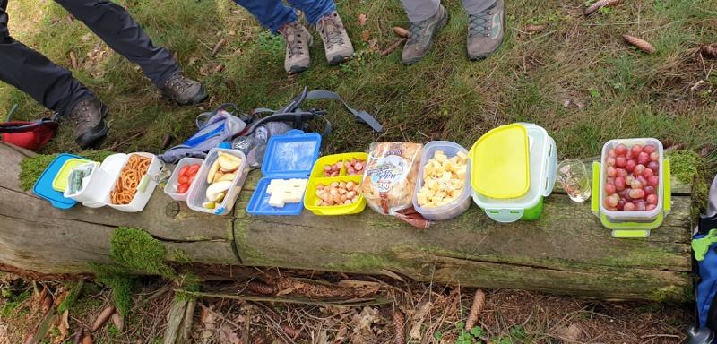Wanderung im Taunus - Picknick