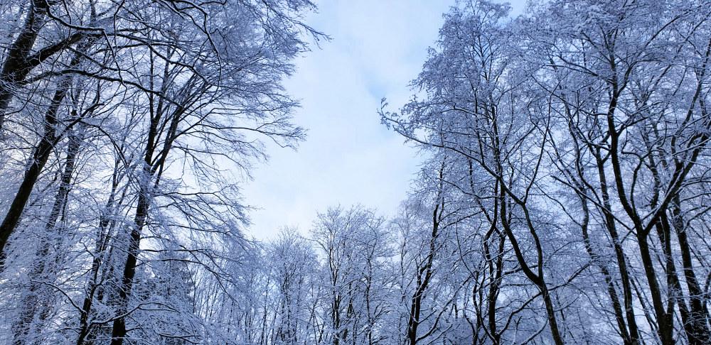 Winterwonderland - Blue Sky